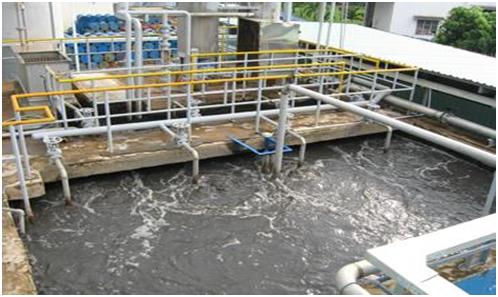 Hệ thống xử lý nước thải bột mì
