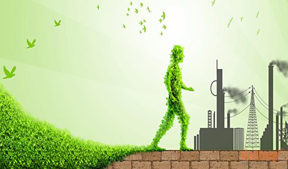 Các yếu tố chính trong báo cáo đánh giá môi trường định kỳ