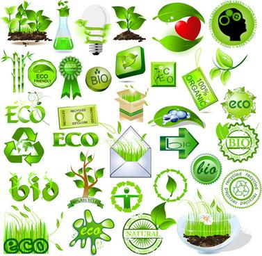 Quy trình lập kế hoạch bảo vệ môi trường