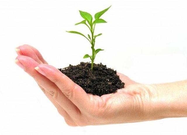 Lập kế hoạch bảo vệ môi trường