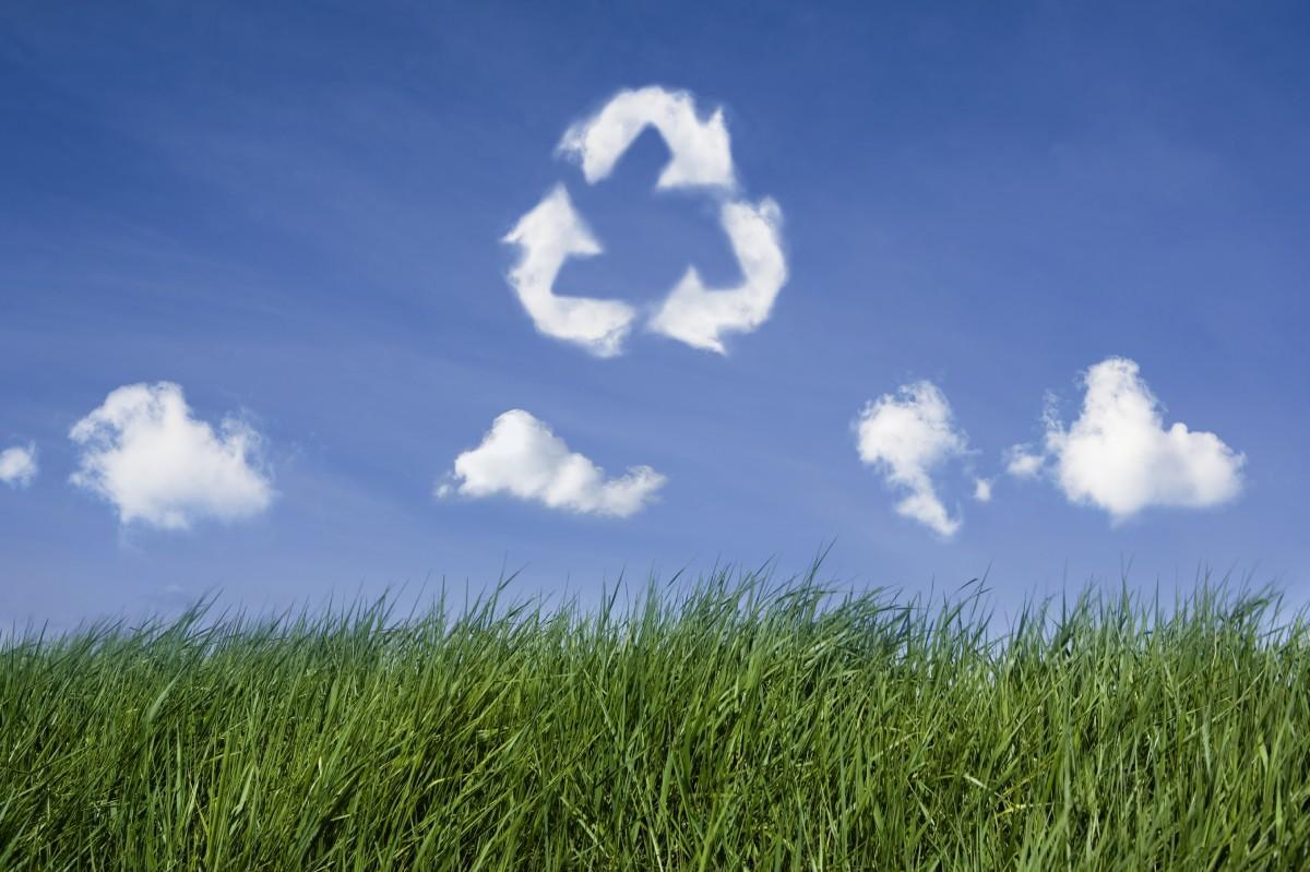 Quy trình kế hoạch bảo vệ môi trường