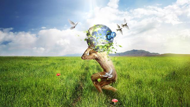 Quy trình lập cáo cáo giám sát môi trường định kỳ