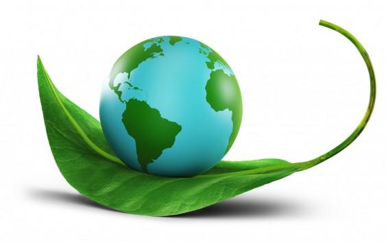 Kế hoạch quản lý môi trường của đề án bảo vệ môi trường đơn giản
