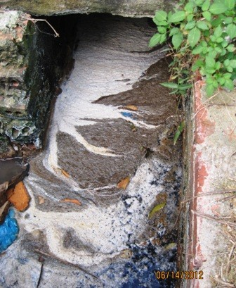 Hệ thống xử lý nước thải môi trường chế biến thủy sản
