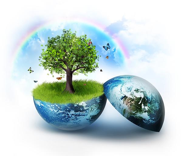 Kết quả hình ảnh cho tác động môi trường