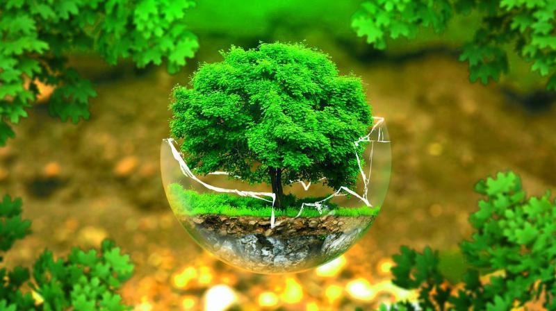 Tổng quan về Đề án bảo vệ môi trường chi tiết