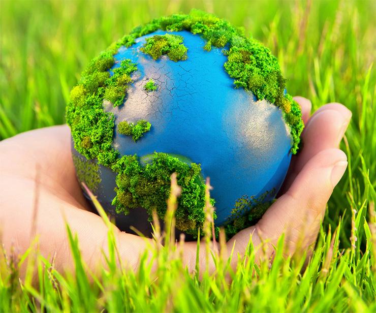 Thẩm định báo cáo đánh giá tác động môi trường