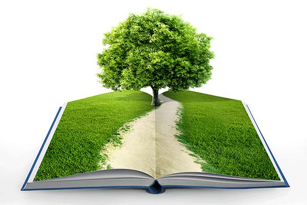Quy trình đề án bảo vệ môi trường chi tiết