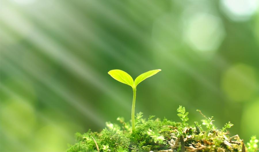 Tổng quan về Quan trắc môi trường định kỳ