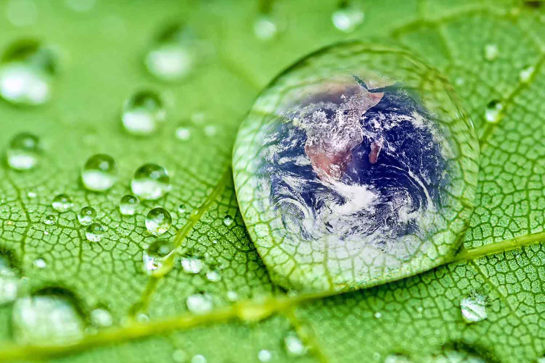 Lập báo cáo đánh giá tác động môi trường dtm